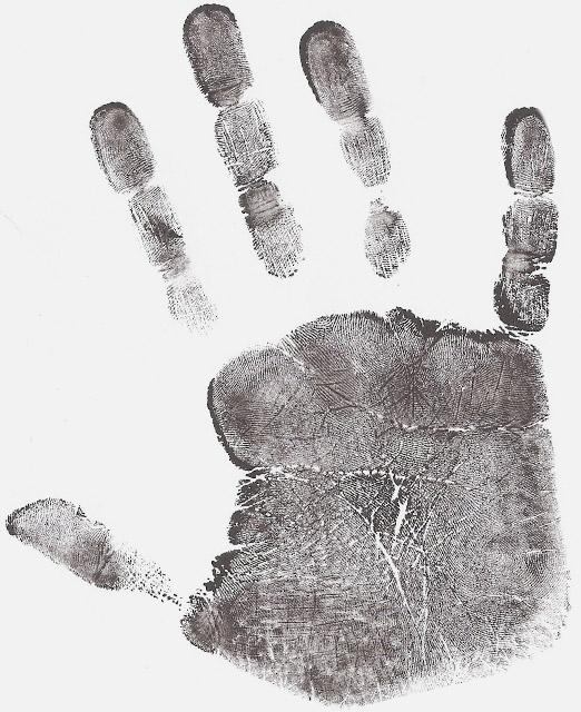 Forensic fingerprint